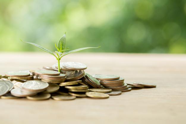 При низькій зарплаті можна отримати ПСП